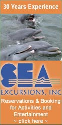 Sea Excursions Naples Florida