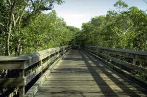 Naples Florida parks